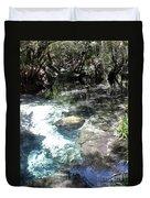Lithia Springs Duvet Cover