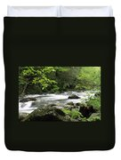 Litltle River 1 Duvet Cover by Marty Koch