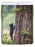 Little Bear Big Tree Duvet Cover