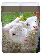 Little Lambs Eat Straw Not Ivy Duvet Cover