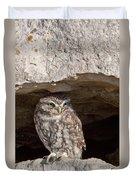 Little Owl Duvet Cover