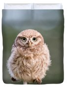Little Owl Chick Duvet Cover
