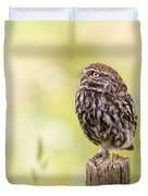 Little Owl Looking Up Duvet Cover
