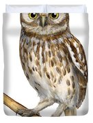 Little Owl Or Minerva's Owl Athene Noctua - Goddess Of Wisdom- Chouette Cheveche- Nationalpark Eifel Duvet Cover