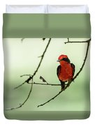 Little Red Beauty - Vermilion Flycatcher Duvet Cover
