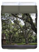 Live Oak And Spanis Moss Landscape Duvet Cover