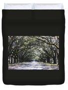 Live Oak Lane In Savannah Duvet Cover by Carol Groenen