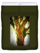 Live Oak With Cypress Beyond Duvet Cover