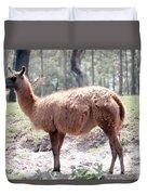 Llamalovely Duvet Cover