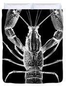 Crawfish In The Dark - Xray Duvet Cover