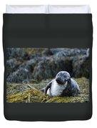 Loch Dunvegan's Harbor Seal Duvet Cover