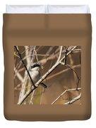 Loggerhead Shrike Duvet Cover