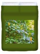 Lollipop Bush In Bourbon Resort Gardens Near Iguazu Falls National Park-brazil  Duvet Cover