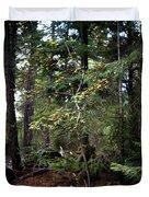 Lone Dogwood Duvet Cover
