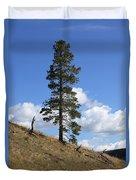 Lone Pine, Yellowstone Duvet Cover