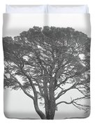 Lone Scots Pine, Crannoch Woods Duvet Cover