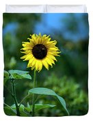 Lone Sunflower  Duvet Cover