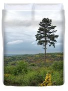 Lone Tree At Devils Punch Bowl Duvet Cover