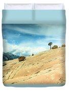 Lone Tree At Yosemite Duvet Cover