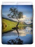 Lone Tree, Llyn Padarn Duvet Cover
