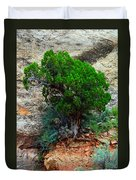 Lone Tree On A Cliff Duvet Cover