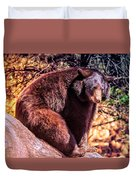 Lonely Black Bear On A Rock Duvet Cover