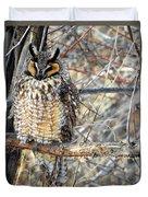 Long Eared Owl Resting Duvet Cover
