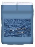 Long-finned Pilot Whales Duvet Cover
