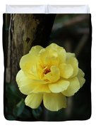 Single Yellow Rose  Duvet Cover