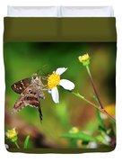 Long-tailed Skipper Butterfly Duvet Cover