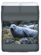 Long Whiskers On A Harbor Seal Duvet Cover