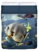 Longfin Batfish Duvet Cover
