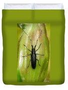 Longhorn Beetle Duvet Cover