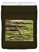 Longtailed Salamander Duvet Cover