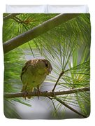 Looking Down - Common Sparrow - Passer Domesticus Duvet Cover