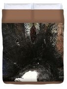 Looking Through The Hollow Trunk Of An Ancient Fallen Sequoia In Kings Canyon California Duvet Cover