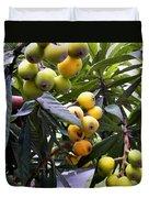 Loquat Exotic Tropical Fruit  2 Duvet Cover