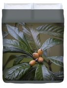Loquat Fruit Duvet Cover