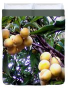 Loquats In The Tree 1 Duvet Cover
