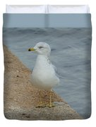 Lost Seagull Duvet Cover
