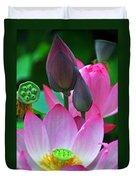 Lotus Blossoms  Duvet Cover