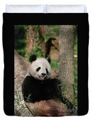 Lounging Giant Panda Bear With A Shoot Of Bamboo Duvet Cover