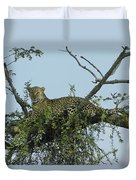 Lounging Leopard Duvet Cover