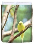Lovable Little Budgie Parakeet Living In Nature Duvet Cover