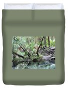 Lovely Lithia Springs Duvet Cover