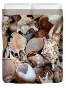 Lovely Seashells Duvet Cover