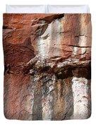 Lower Emerald Pool Rock-zion National Park Duvet Cover