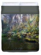 Lower Pond At Portland Japanese Garden Duvet Cover