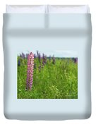 Lupins 27 Duvet Cover