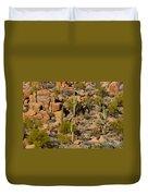 Lush Arizona Desert Landscape Duvet Cover